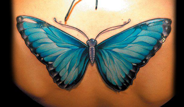 Realistic Back Butterfly Tattoo by Black Rose Tattoo
