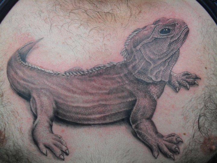 Realistic Crow Iguana Tattoo by Blue Lotus