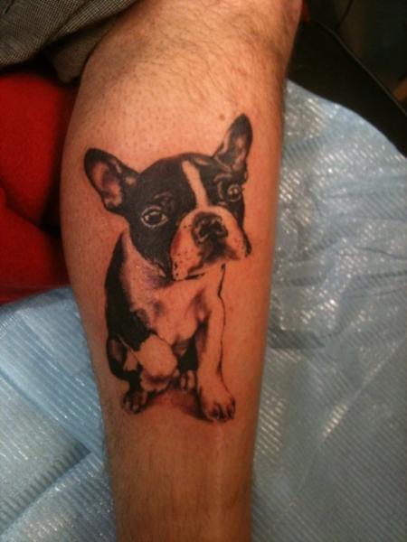 Arm Realistic Dog Tattoo by Stay True Tattoo