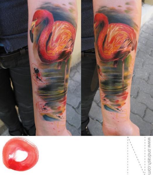 Arm Realistische Flamingo Tattoo von Ondrash Tattoo