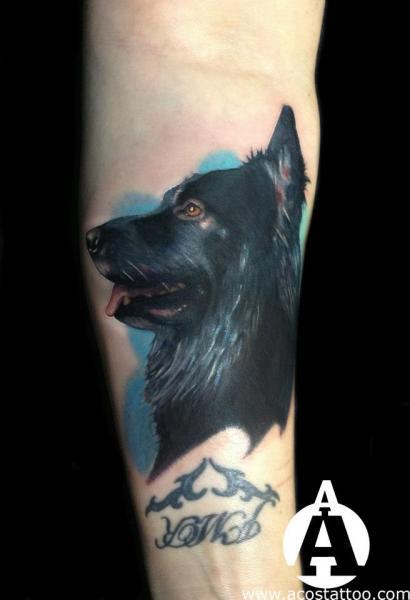 Arm Realistische Hund Tattoo von Andres Acosta