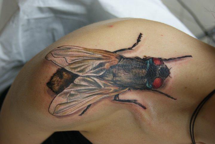 Schulter Realistische Fliege Tattoo von Tantrix Body Art