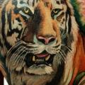 Shoulder Realistic Tiger tattoo by Tantrix Body Art