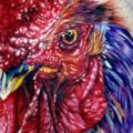 tatuaggio Braccio Realistici Gallo di Cecil Porter