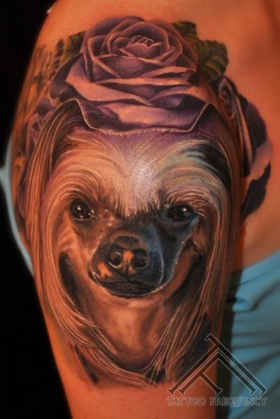 Shoulder Realistic Dog Tattoo by Tattoo Frequency