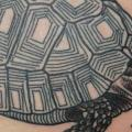 Turtle tattoo by Into You Tattoo