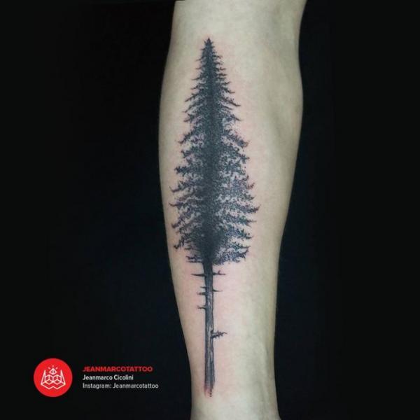 tatouage bras arbre par 2vision estudio. Black Bedroom Furniture Sets. Home Design Ideas