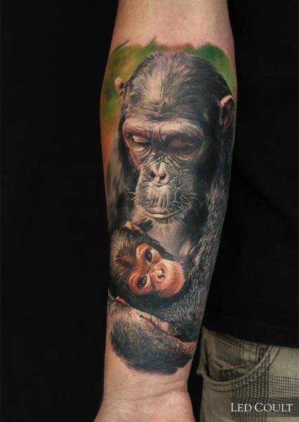 Tatuaje Brazo Realista Mono por Led Coult