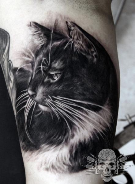 Arm Realistic Cat Tattoo by Tattooed Theory