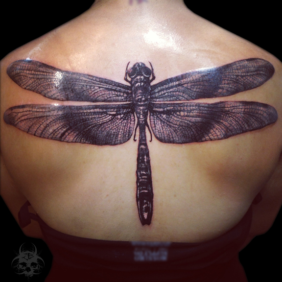 Realistic Back Dragonfly Tattoo by Jeremiah Barba