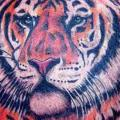 Shoulder Realistic Tiger tattoo by Blancolo Tattoo