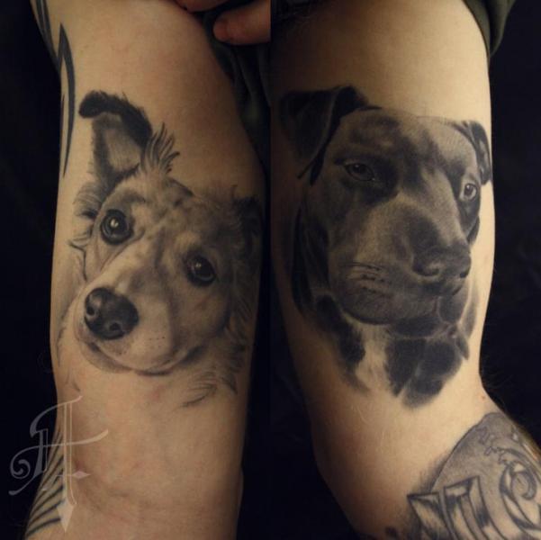 Arm Realistische Hund Tattoo von Antony Tattoo