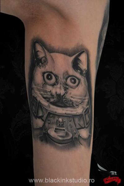 Arm Fantasy Cat Tattoo by Black Ink Studio