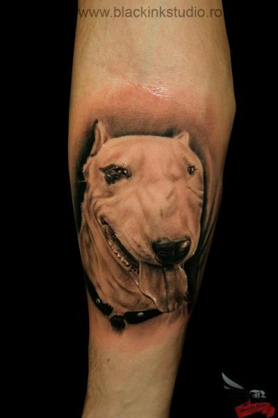 Arm Realistische Hund Tattoo von Black Ink Studio