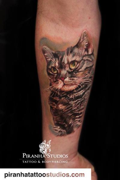 Arm Realistic Cat Tattoo by Piranha Tattoo Studio