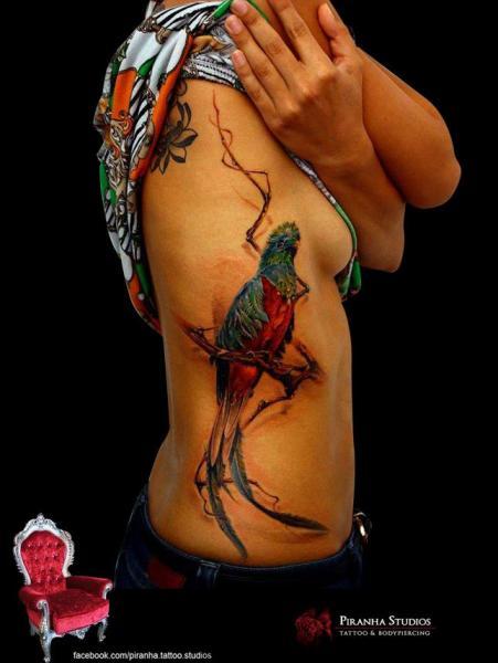 Realistic Side Parrot Tattoo by Piranha Tattoo Studio