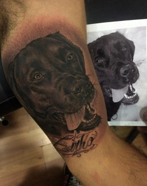 Arm Realistic Dog Tattoo by Fredy Tattoo