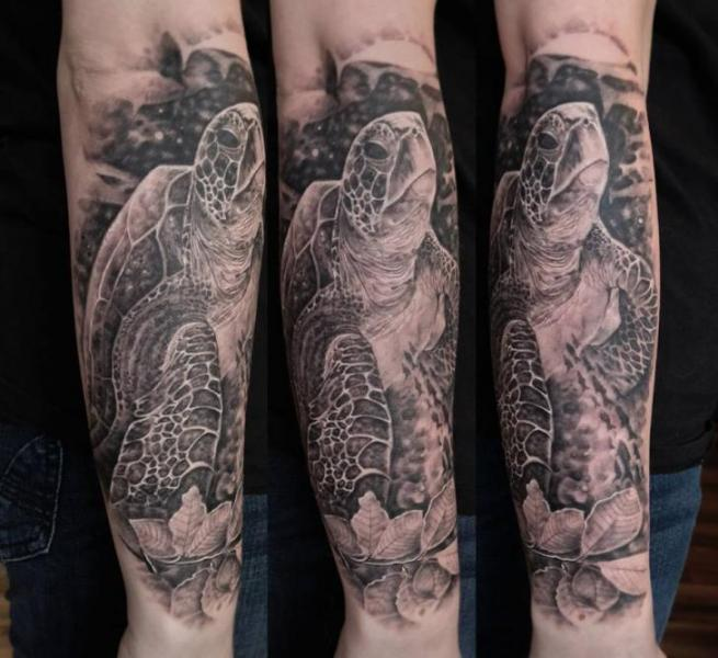 Arm Realistic Turtle Tattoo by Matthew James
