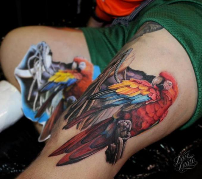Realistic Parrot Thigh Tattoo by Dave Paulo