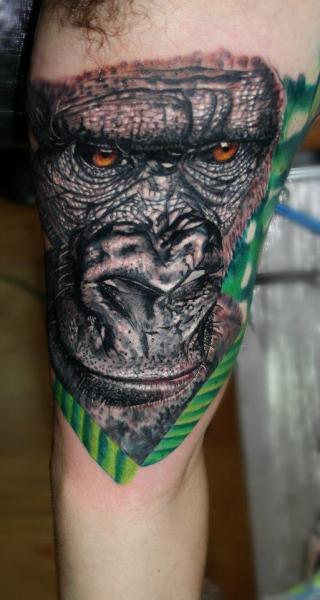 Tatuaggio Braccio Realistici Gorilla di Carlox Tattoo