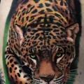 Shoulder Realistic Tiger tattoo by Carlox Tattoo