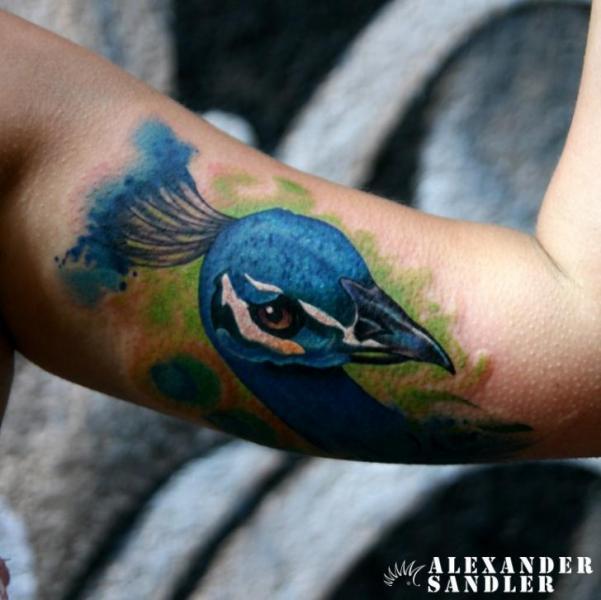 Tatuaje Brazo Pavo Real Acuarela por Kipod Studio