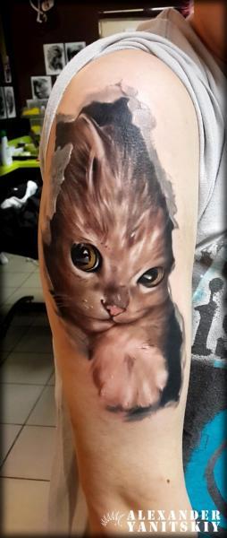 Shoulder Cat Tattoo by Kipod Studio