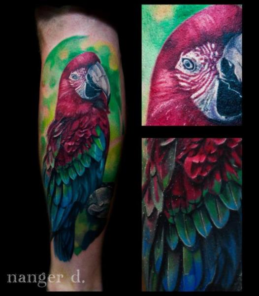 Arm Realistic Parrot Tattoo by Kwadron Tattoo Gallery