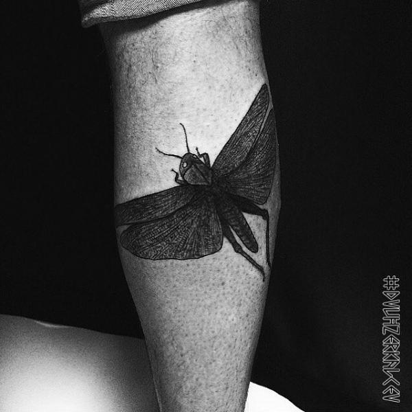 Calf Dotwork Insect Tattoo by Kostya Dvuhzerkalcev