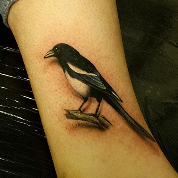 Tatuaggio Braccio Realistici Uccello di Sacred Art Tattoo