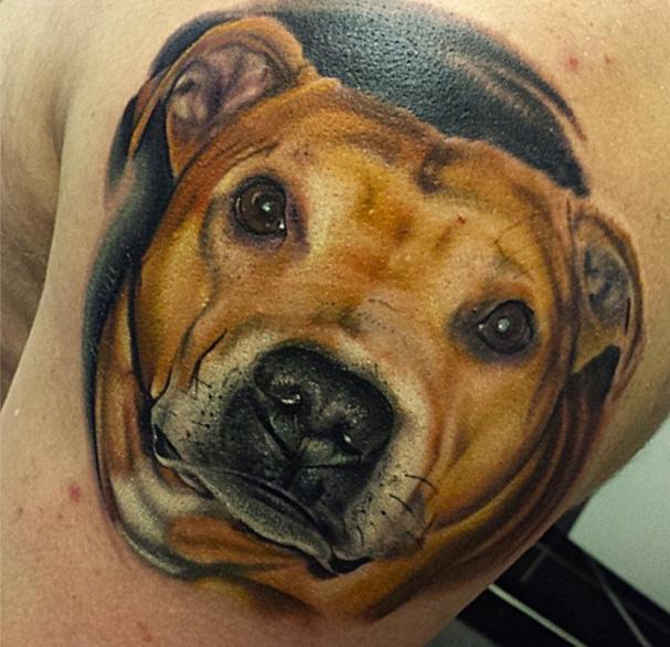 Schulter Realistische Hund Tattoo von Sacred Art Tattoo