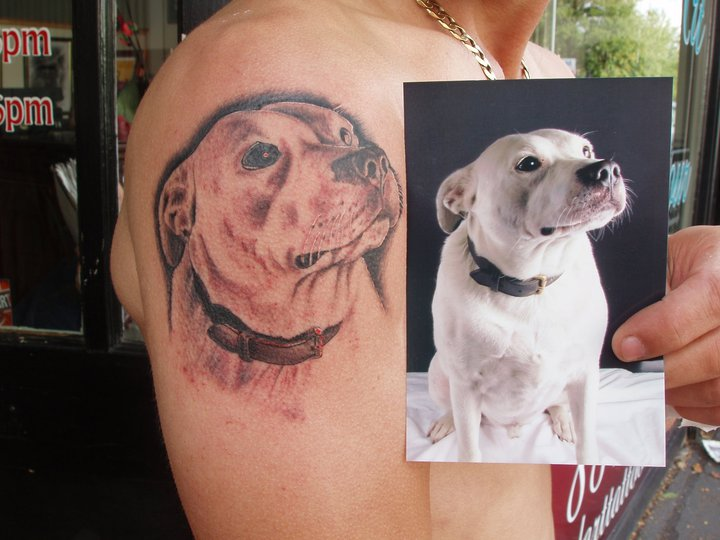 Shoulder Realistic Dog Tattoo by Sacred Art Tattoo