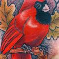 Shoulder Realistic Bird tattoo by Vienna Electric Tattoo
