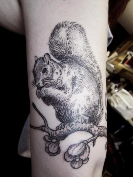 Arm Squirrel Tattoo by Ottorino d'Ambra