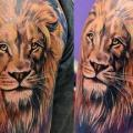 Shoulder Realistic Lion tattoo by Secret Tattoo & Piercing