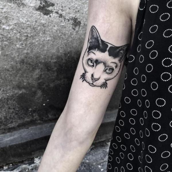 Arm Katzen Dotwork Tattoo von Zmierzloki tattoo