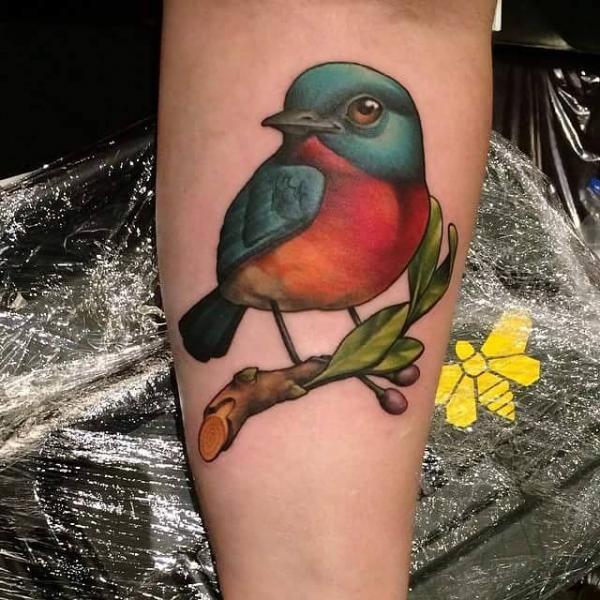 Arm Realistische Vogel Tattoo von Niteowl Tattoo