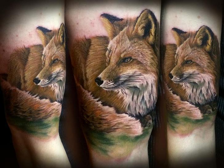 Arm Realistic Fox Tattoo by Sam Barber