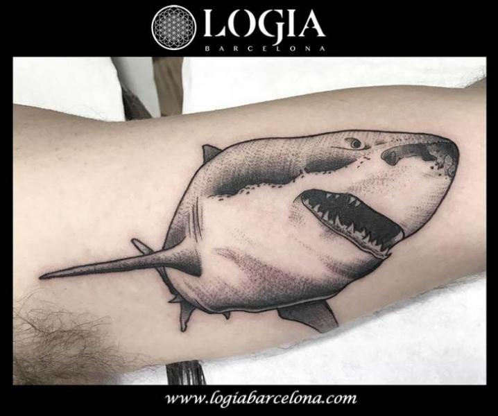 Arm Dotwork Shark Tattoo by Logia Barcelona