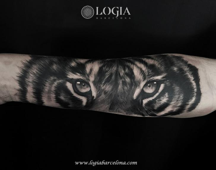 Arm Realistic Tiger Tattoo by Logia Barcelona