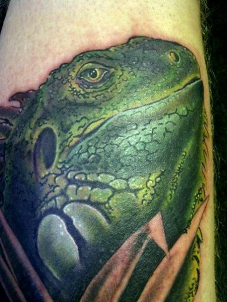 Realistische Leguan Tattoo von Bout Ink Tattoo